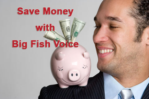 Save Money with Big Fish Voice